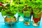 Adet Düzenleyici Bitkiler